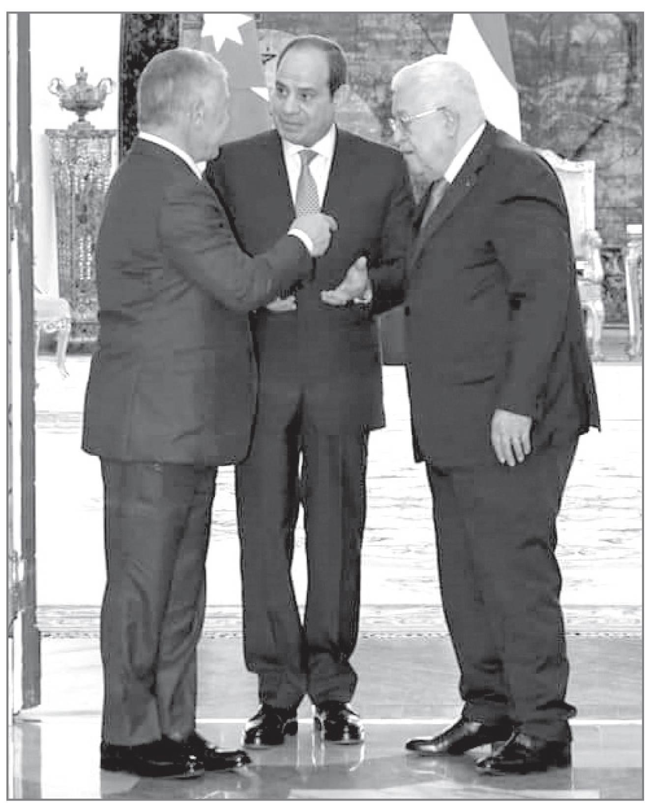 جهود مصر مستمرة تجاه كل ما يتعلق بالقضية الفلسطينية
